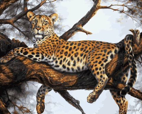 "Картина по номерам ""Леопард на отдыхе"" (400х500 мм) — фото, картинка"
