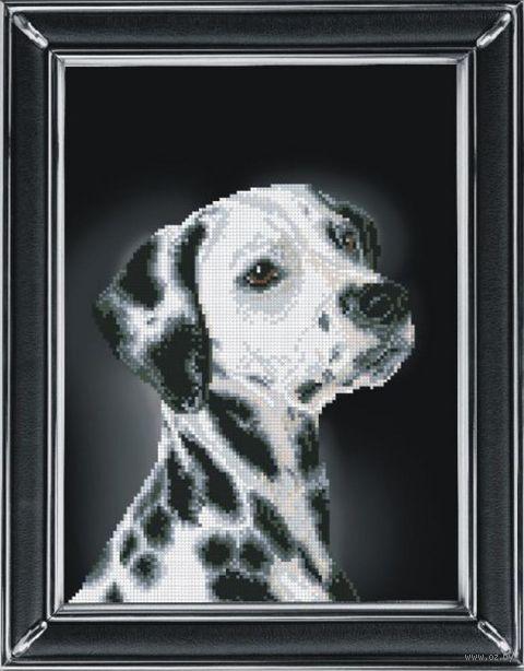 """Вышивка крестом """"Далматинец"""" (220х300 мм) — фото, картинка"""