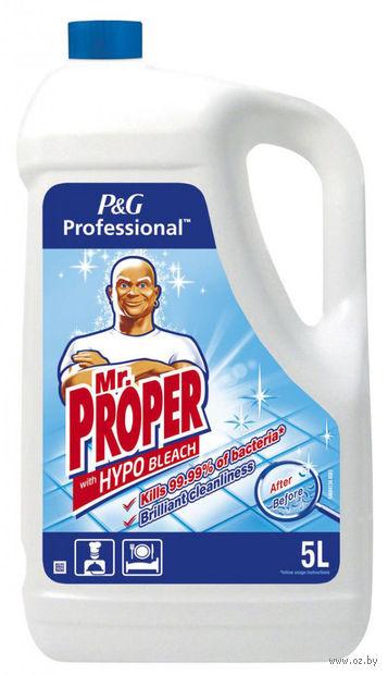 """Средство моющее универсальное """"Professional"""" (5 л) — фото, картинка"""
