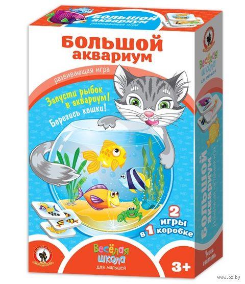 Большой аквариум — фото, картинка