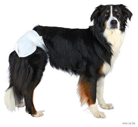 Подгузники для собак (12 шт.; L; 38-56 см) — фото, картинка