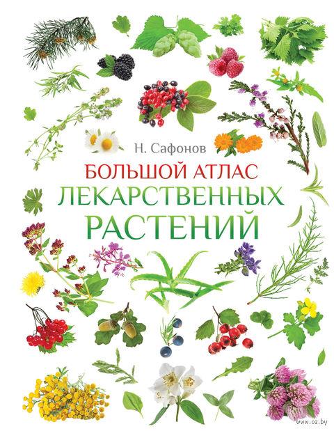 Большой атлас лекарственных растений — фото, картинка