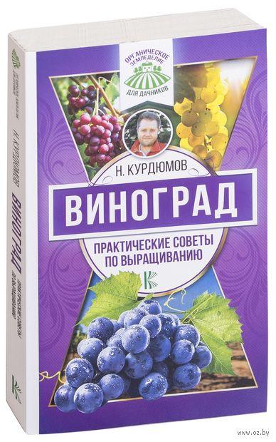Виноград. Практические советы по выращиванию — фото, картинка