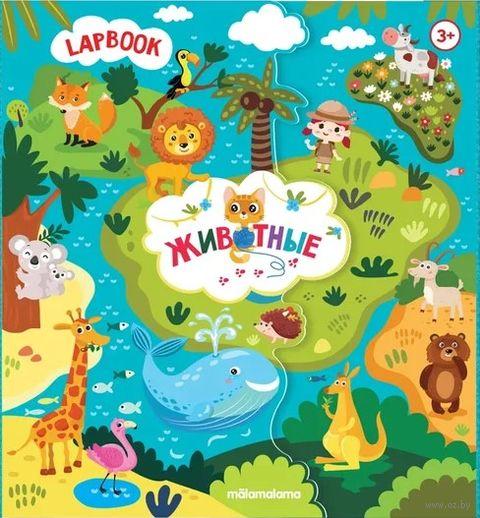 Lap book. Детям о животных — фото, картинка