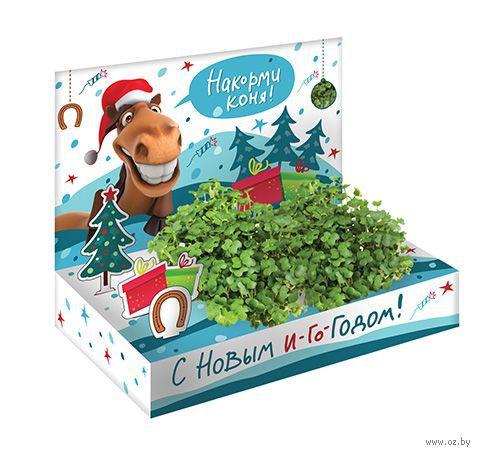 """Набор для выращивания растений """"Живая открытка. Накорми коня"""" — фото, картинка"""