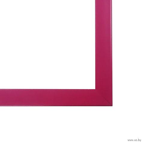 Рамка для картины по номерам (400х500 мм; пластик; малиновый)