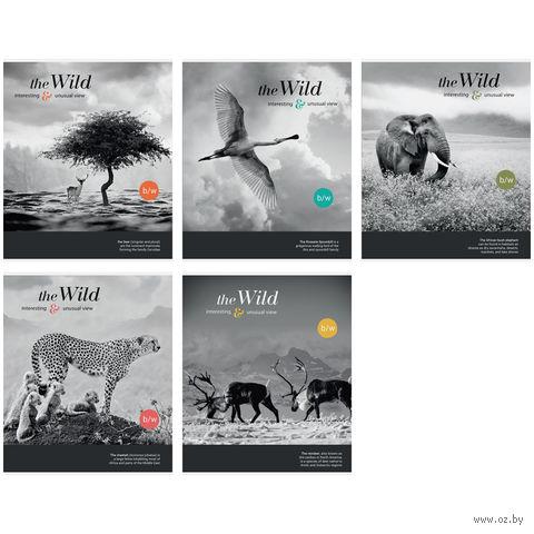 "Тетрадь в клетку 48 листов ""Животные. The Wild. Unusual View"""