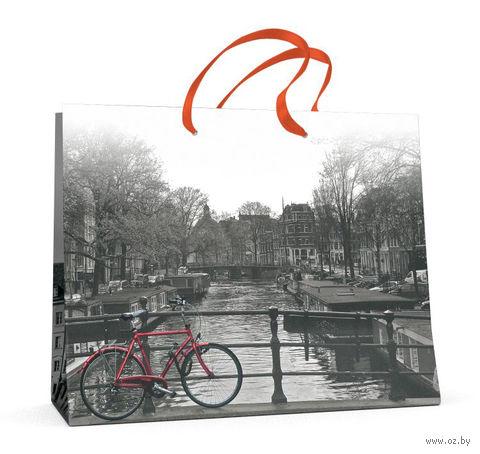 """Пакет бумажный подарочный """"Город и цвет"""" (32,5х26x13 см) — фото, картинка"""