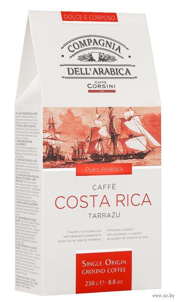 """Кофе молотый """"Compagnia Dell Arabica. Коста Рика"""" (250 г) — фото, картинка"""