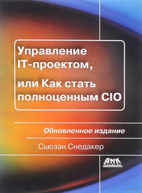 Управление IT-проектом, или Как стать полноценным CIO — фото, картинка