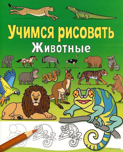 Животные — фото, картинка