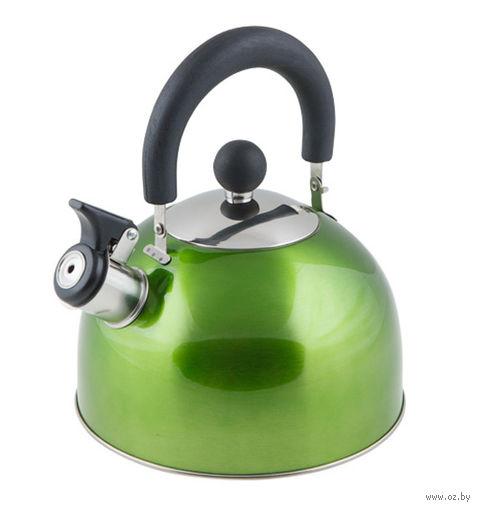 Чайник металлический со свистком (2,15 л; зеленый металлик) — фото, картинка