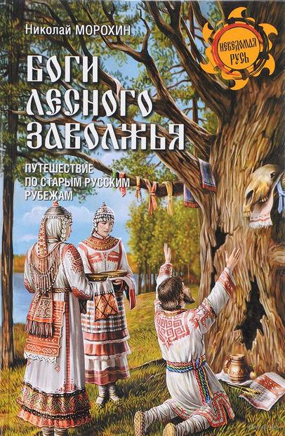 Боги Лесного Заволжья. Путешествие по старым русским рубежам — фото, картинка
