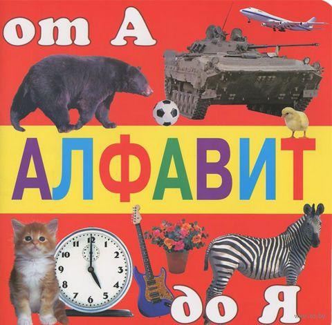 Алфавит от А до Я. Петр Синявский