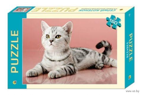"""Пазл """"Серый котенок"""" (160 элементов) — фото, картинка"""