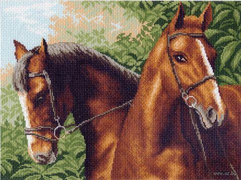 """Канва с нанесенным рисунком """"Пара лошадей"""""""