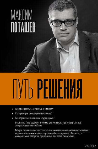 Путь решения. Максим Поташев