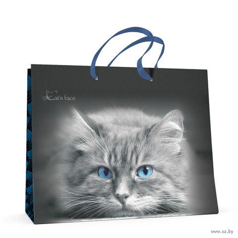 """Пакет бумажный подарочный """"Кошки. Яркий взгляд"""" (32,5x26x13 см) — фото, картинка"""