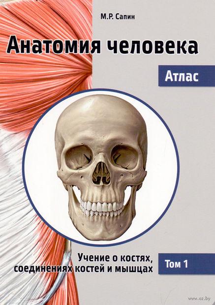 Анатомия человека. Атлас. В 3 томах. Том 1. Учение о костях, соединениях костей и мышцах. Михаил Сапин