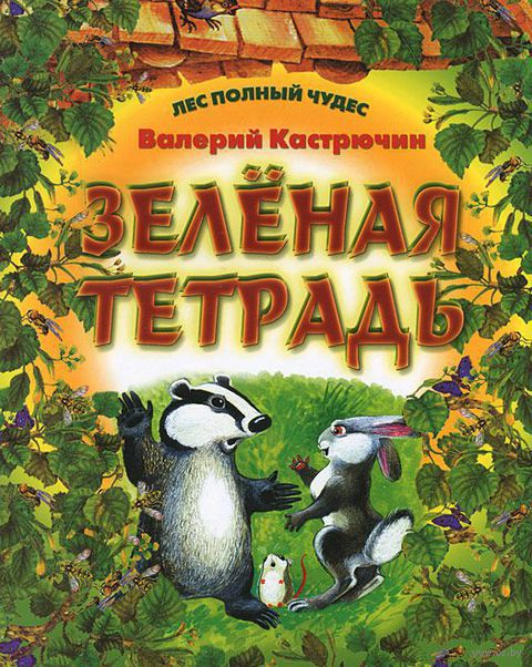Зеленая тетрадь. Валерий Кастрючин