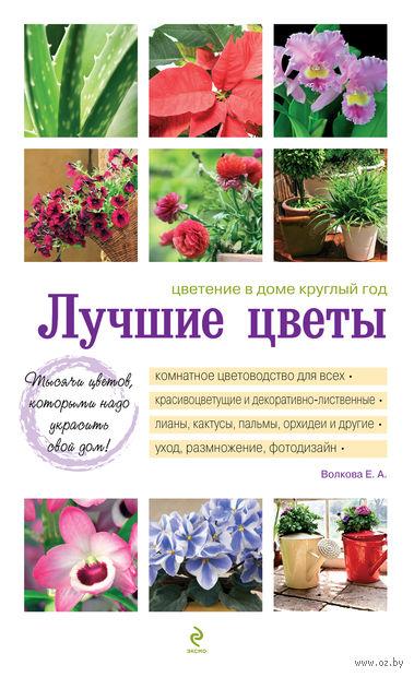 Лучшие цветы. Цветение в доме круглый год. Екатерина Волкова