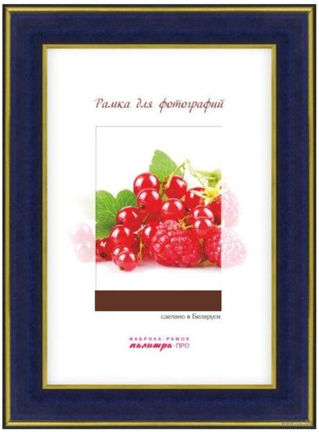 Рамка пластиковая со стеклом (21х30 см; арт. 25/444) — фото, картинка
