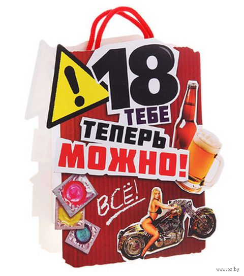 "Пакет бумажный подарочный ""Все можно"" (17х20х6 см; арт. 10367393)"