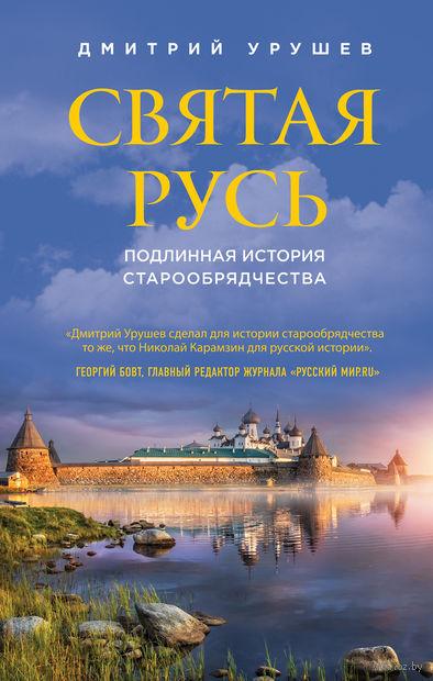 Святая Русь. Подлинная история старообрядчества — фото, картинка