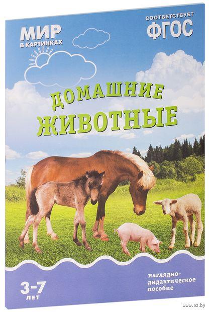 Домашние животные. Наглядно-дидактическое пособие. Для детей 3-7 лет. Т. Минишева