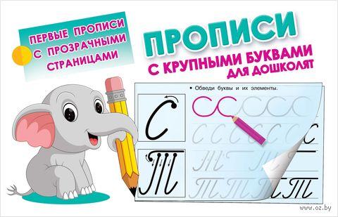 Прописи с крупными буквами для дошколят — фото, картинка
