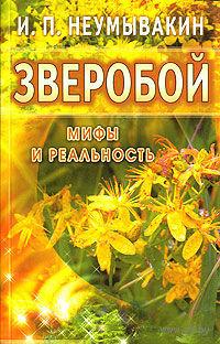 Зверобой. Иван Неумывакин
