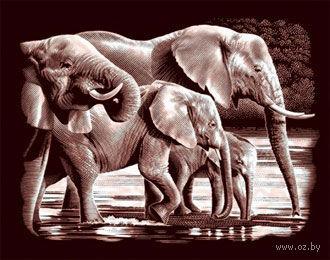 """Гравюра """"Слоны на водопое"""" (медь) — фото, картинка"""