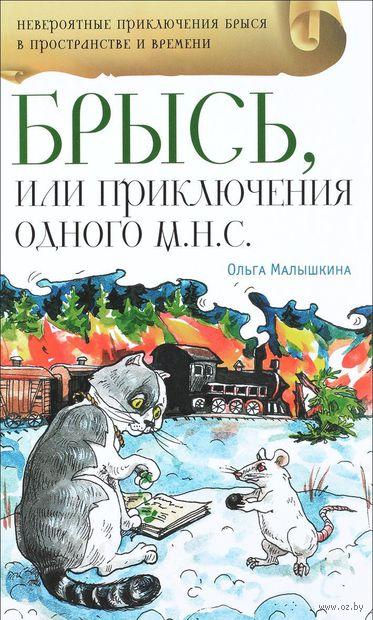 Брысь, или Приключения одного м.н.с — фото, картинка