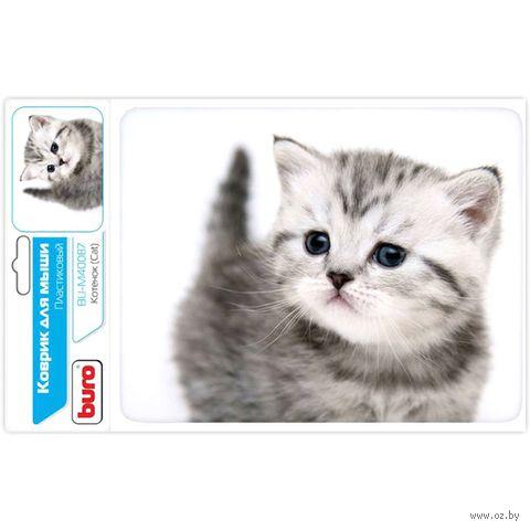 Коврик для мыши Buro BU-M40087 (рисунок/котенок) — фото, картинка
