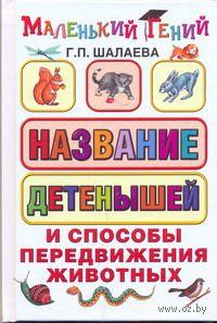 Названия детенышей и способы передвижения животных. Галина Шалаева