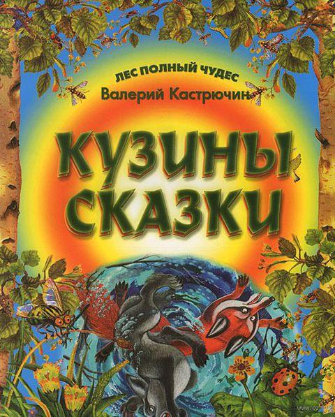 Кузины сказки. Валерий Кастрючин, Юрий Струков