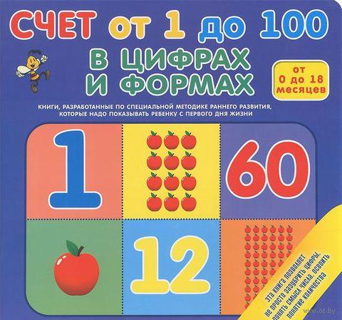 Счет от 1 до 100 в цифрах и формах