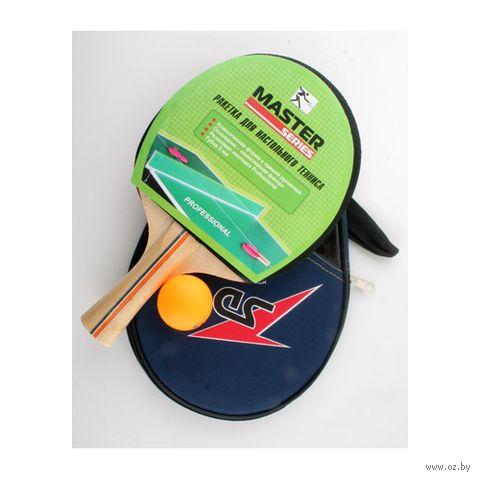 Набор для игры в теннис (арт. Т24312)