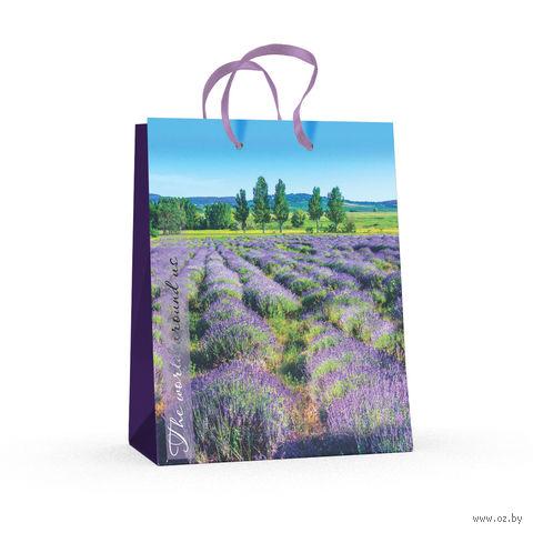 """Пакет бумажный подарочный """"Природа"""" (17,8x22,5x10,2 см) — фото, картинка"""