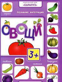 Познание. Интеграция. Овощи