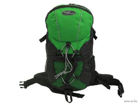 """Рюкзак """"Стриж-18"""" (цвет: зеленый/черный)"""
