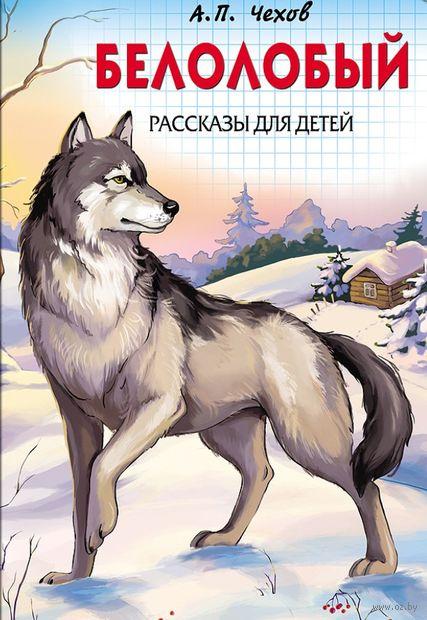 Белолобый. Рассказы для детей — фото, картинка