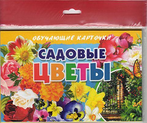Садовые цветы. Карточки (европодвес) — фото, картинка