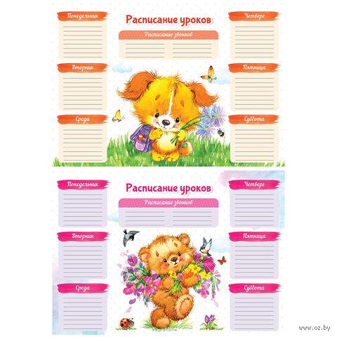"""Расписание уроков """"Пушистики"""" А4"""