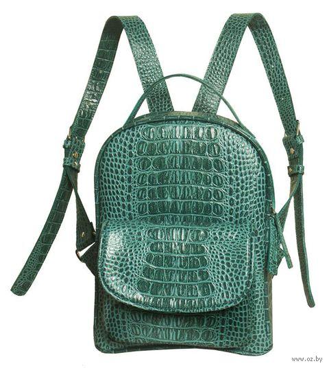 Рюкзак (зеленый; арт. B50-42-0) — фото, картинка