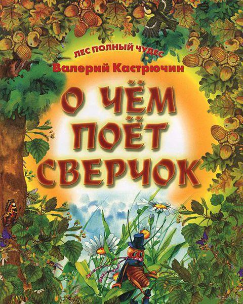 О чем поет Сверчок. Валерий Кастрючин