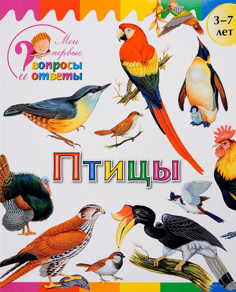 Птицы. А. Орехов