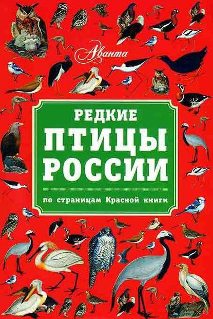 Редкие птицы России. По страницам Красной книги. В. Бабенко