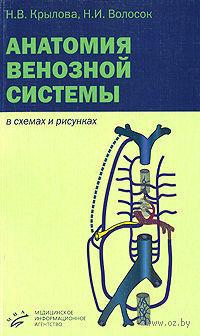 Анатомия венозной системы в схемах и рисунках. Нина Крылова, Наталья Волосок