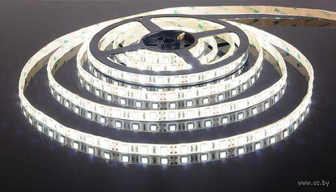 Лента светодиодная LED SMD 2835/60 IP20-4.8W/CW (5 м)